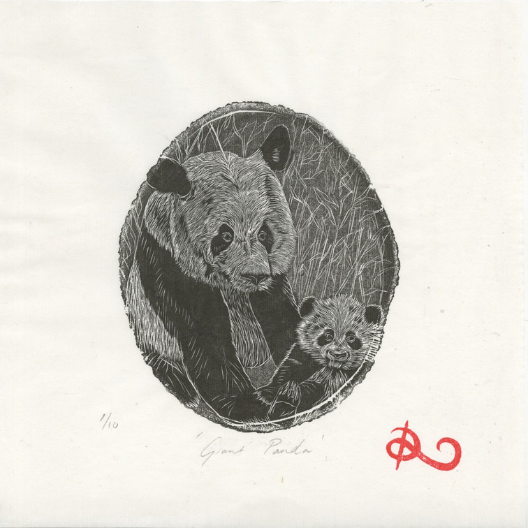 'Giant panda' 2014