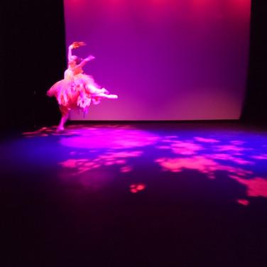 Firebird Ballet .JPG