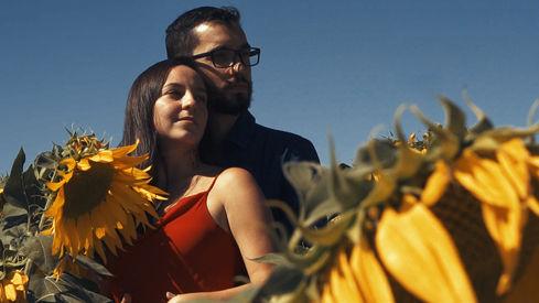 Ensaio de casal em Campo de Girassóis