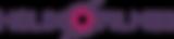 Logo helix fimes
