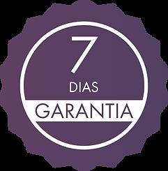 7 DIAS.png
