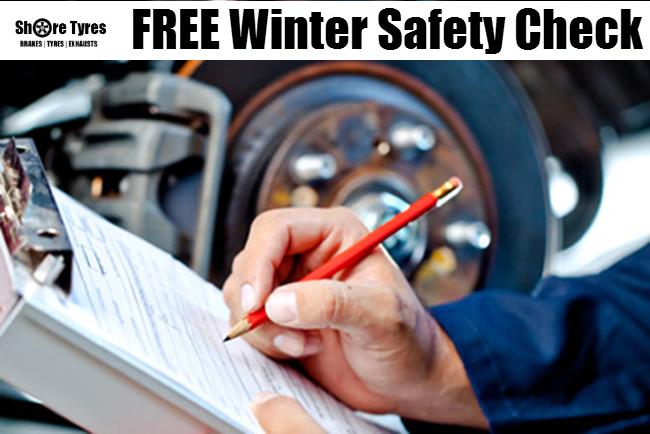 FREE Winter car check