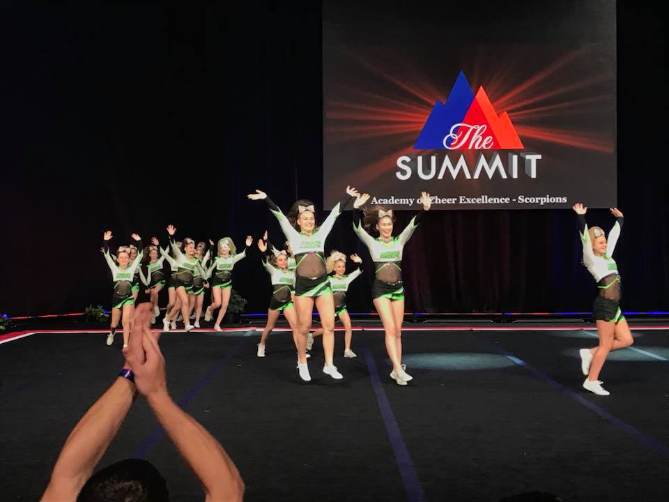 Scorpions at Summit