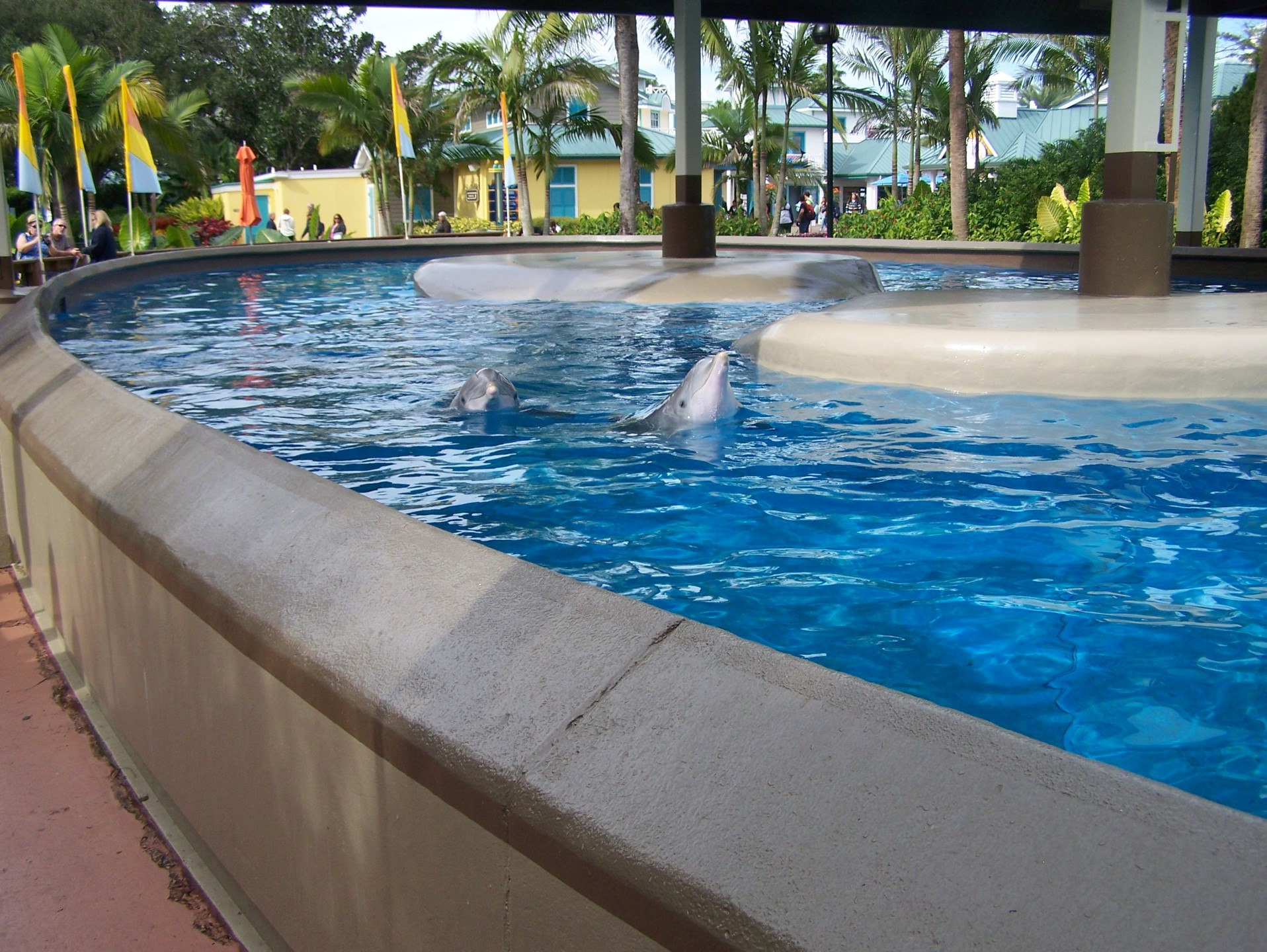 Sea World in Florida
