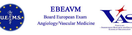 6th BEEAVM (Board of the European Exam on Angiology/Vascular Medicine, Milan, 30th November 2017.