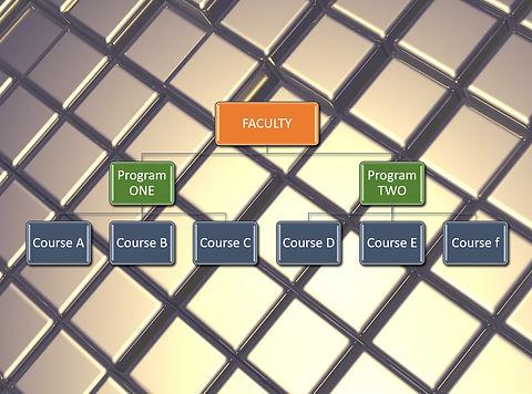 faculty_PROGRAM_COURSE.jpg