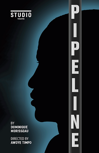 Pipeline Program Thumbnail.png