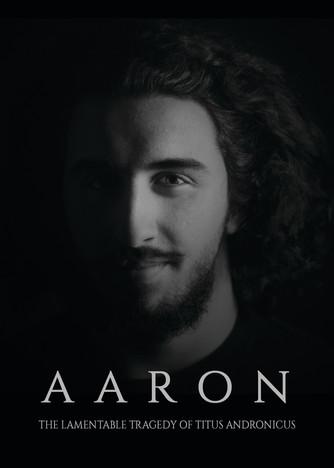 """Aaron"" Character Poster"
