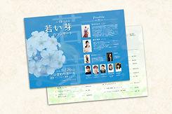 Pamphlet 4.jpg