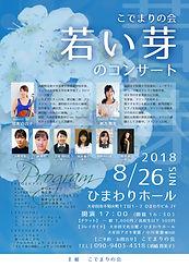 Flyer_004.JPG
