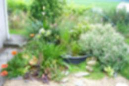 bassin abreuvoir sandrine jardinage