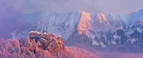 bled-castle-winter-snow-julian-alps.jpg