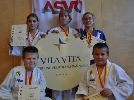 Bgld. JUDO Herbst-Cup 2014