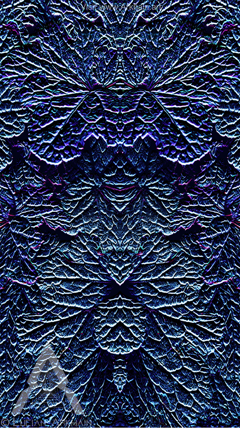 Warp Rift