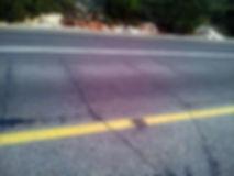 מצלמות המהירות