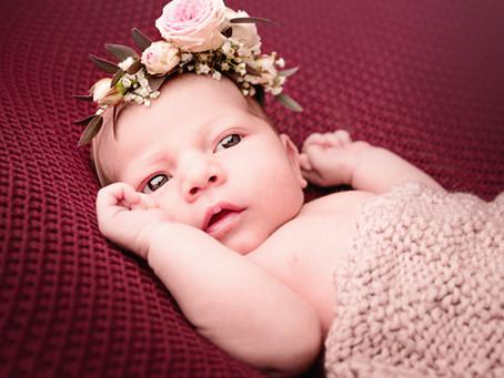 Newborn Fotoshooting 2020