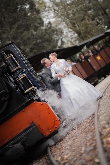 Hochzeit Gärtnerei Zulauf