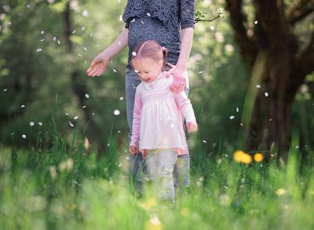 Familienfotoshooting mit Babybauch in Aarau Rohr