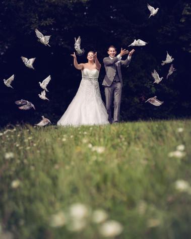 Hochzeit Taubenflug