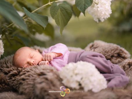 Newborn Fotoshooting unter freiem Himmel