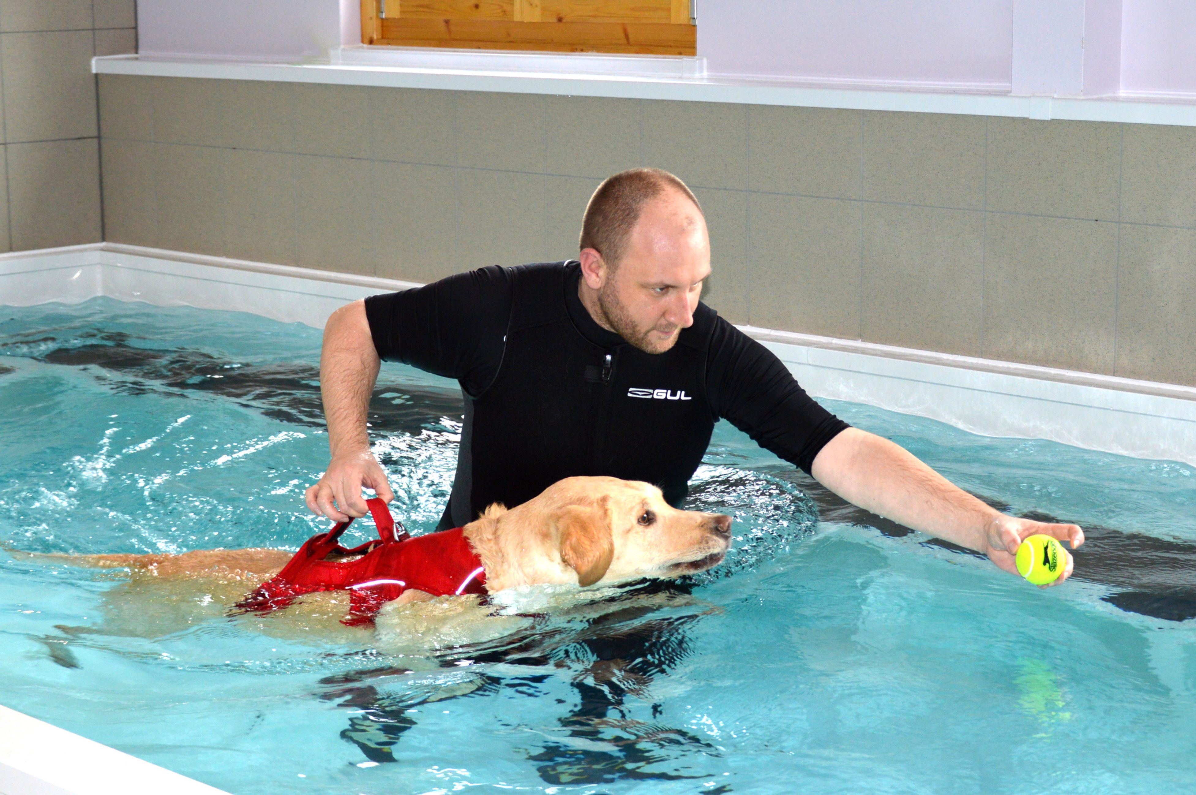 Hydrotherapy for Rehabilitation