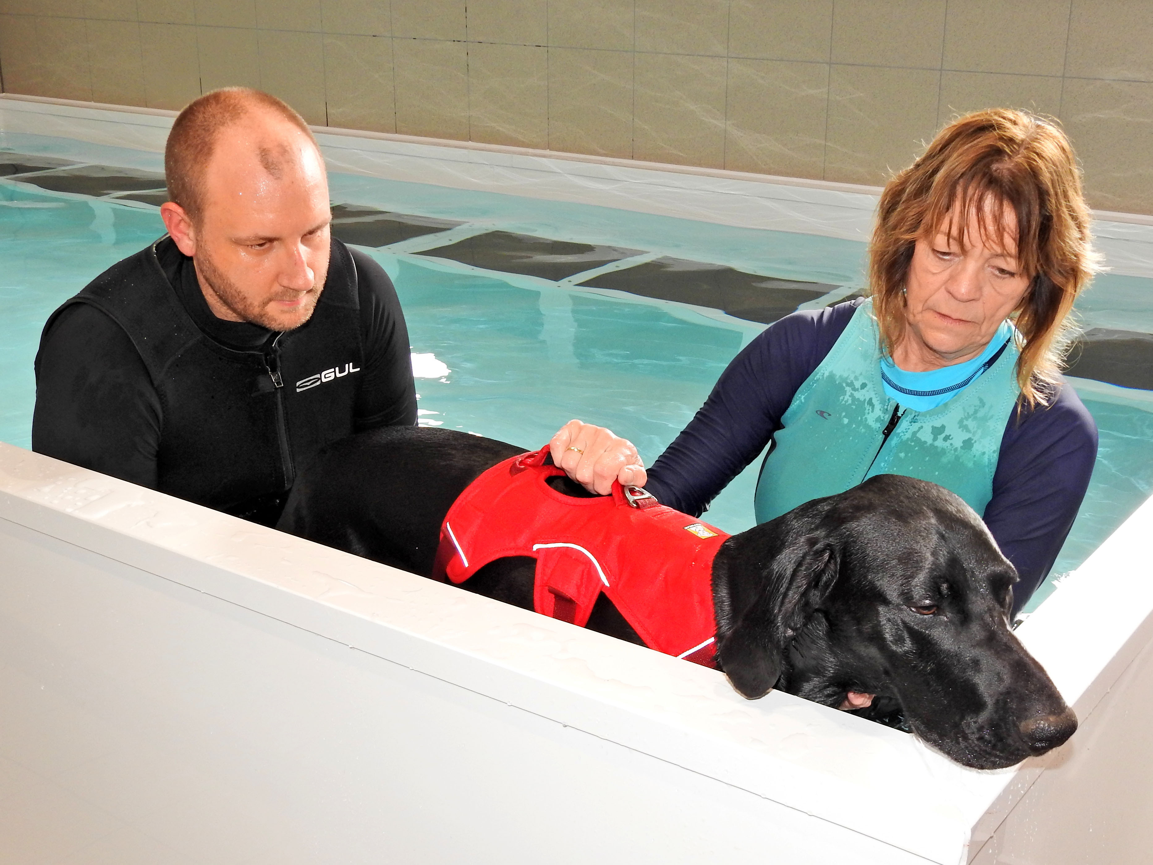 Hydrotherapy for Health & Fitness