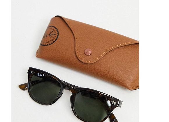 Free Ray Ban Sunglasses