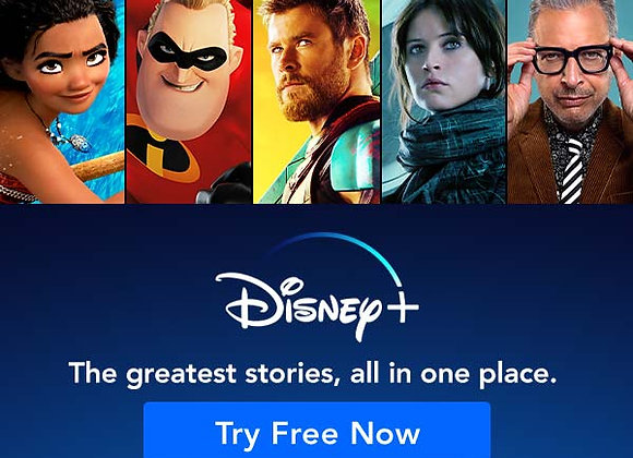 Disney+ Subscription