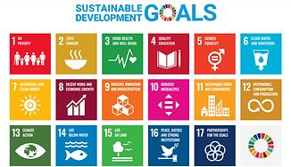 SDG 17 goals.png
