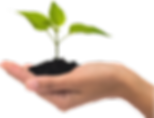 hand_eco.png