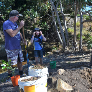 Girl Guides help with planting