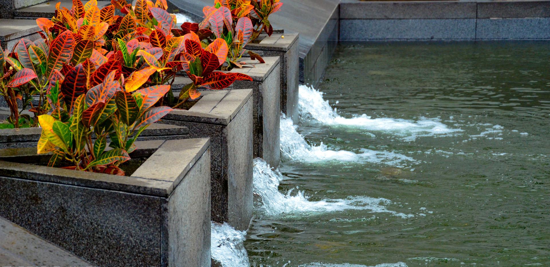 water Garden at BoC