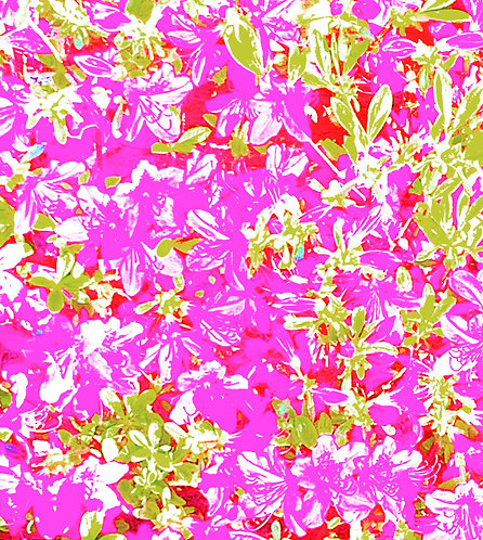 """Abstract Flowers"" Art Print"