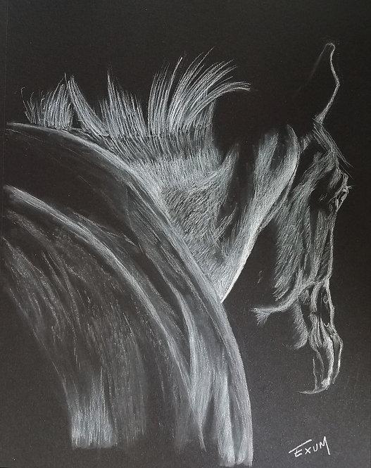 """Blanco"" Art Print"