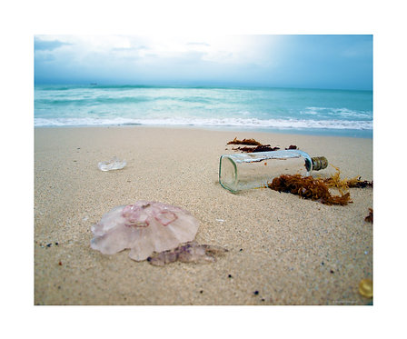"""""""Bottle in South Beach Surf"""" Photography Print"""