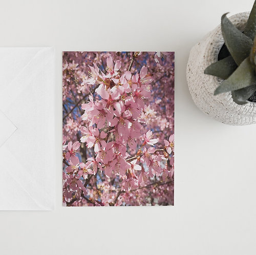 """""""Cherry Delight"""" Blank Card Set of 10"""