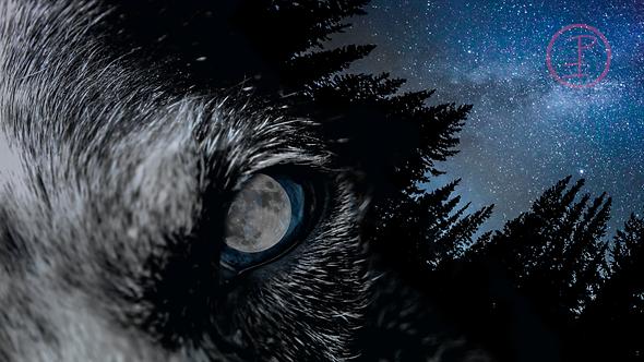 """Wolf Moon"" Art Print"