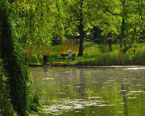 """""""Woman On A Bench At The Park"""" Photography Print"""