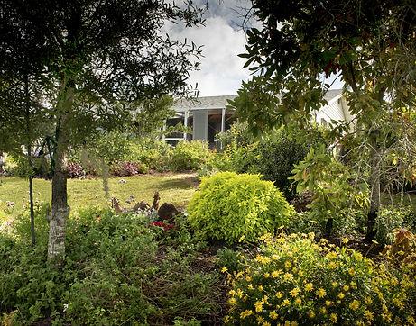 17_Rimpled Bothie Gardens.jpg
