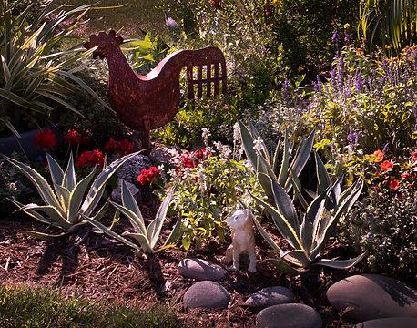 30_Rimpled Bothie Gardens.jpg