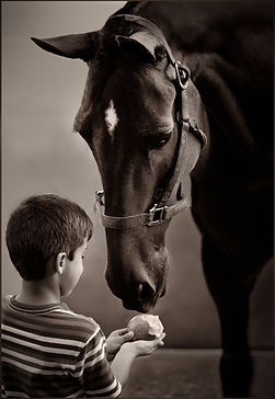 Between Friends: Little boy and horse experiencing webstrings of love