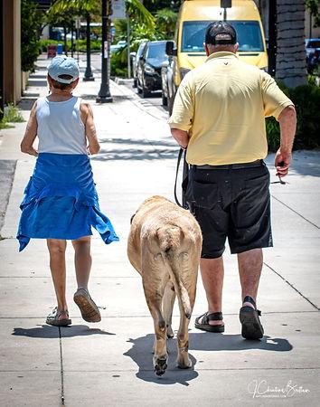 Sarasota Market  favors dogs.