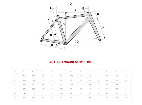 Super_Corsa_Scandium_Geometry.png