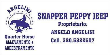 Angelini, Angelo - logo.jpg
