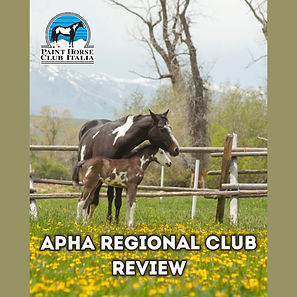 APHA review.jpg