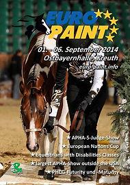 Europei paint horse