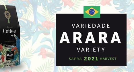O potente Arara, Coffee ++