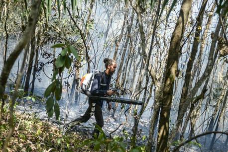 País arde em chamas. Incêndios como o do Parque da Chapada dos Veadeiros podem ser criminosos
