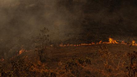 Só em setembro foram registrados 2.531 focos de incêndio em Goiás