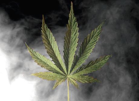 Legalize Jah